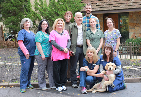 medford, nj animal hospital